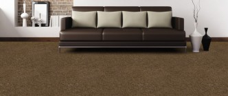 lounge-brown-carpet